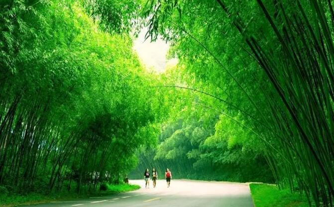 河南洛阳重渡沟、老君山景区请全国游客喝统一绿茶