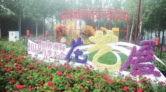 河南南阳世界月季大观园五月免费开放一个月
