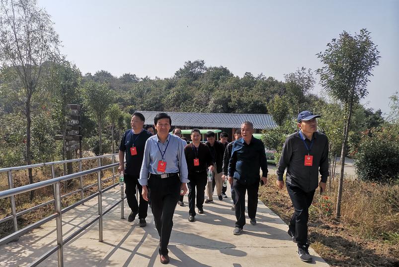 鲁山县政协副主席邢春瑜到阿婆寨景区调研全域旅游和旅游扶贫工作